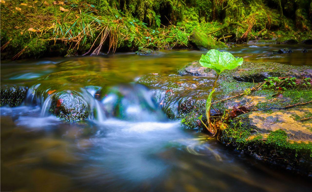 Antonovsky beschreibt in seiner Metapher das Leben als Fluss, in dem sich der Mensch schwimmend behaupten muss. Das ist das Salutogenese Modell.
